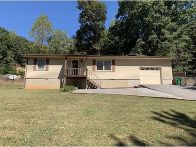 1832 Forest View Drive, Kingsport, TN 37660 - #: 427737