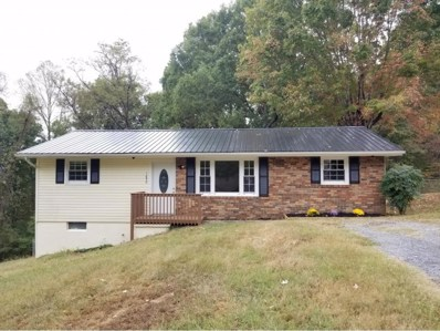 1650 Dexter Road, Kingsport, TN 37660 - #: 428524
