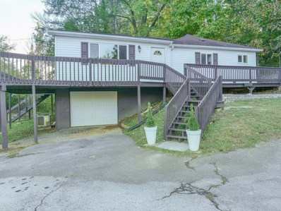 1504 King Springs Road, Johnson City, TN 37601 - #: 428827
