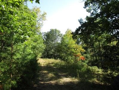 Lick Creek Road, Watauga, TN 37694 - #: 9913738