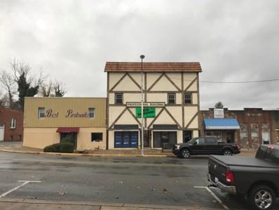 707 Elk Avenue, Elizabethton, TN 37643 - #: 9916051