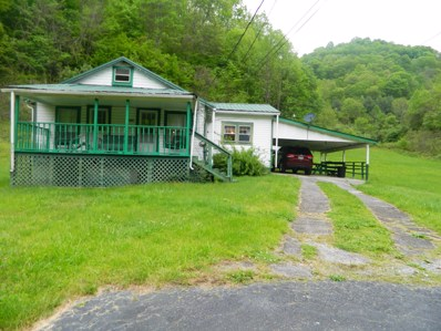 1606 Old VanDyke Hollow Road, Grundy, VA 24614 - #: 9919019