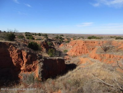 86 Canyons Ranch, Other - Not in list, TX 79261 - #: 19-365