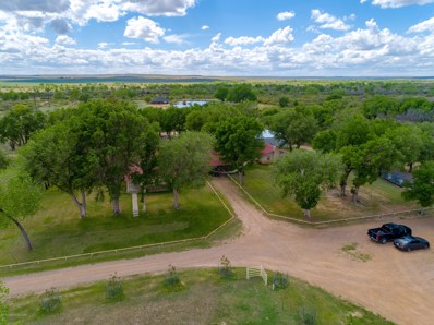 Culwell Ranch, Channing, TX 79018 - #: 19-4065