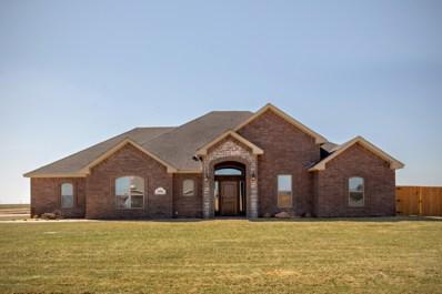 18901 Bradley Ln, Bushland, TX 79124 - #: 19-7807