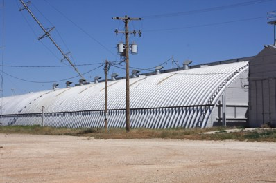 1385 County Road 628, Dimmitt, TX 79027 - #: 19-7937