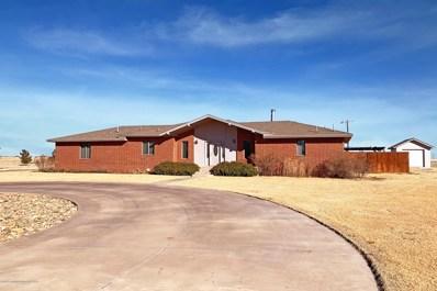 19 Ridgeview Ave, Farwell, TX 79325 - #: 20-384