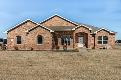 18350 19TH St, Bushland, TX 79124 - #: 20-618