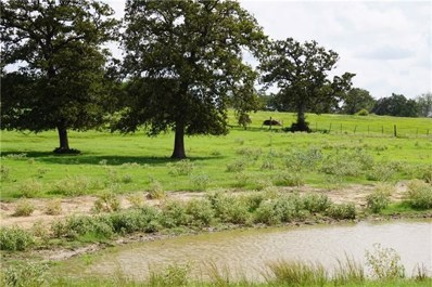 TBD County Road 323, Lexington, TX 78947 - #: 1108115