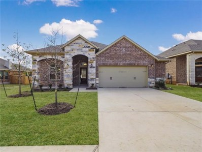 521 Scenic Bluff Dr, Georgetown, TX 78628 - #: 1134993