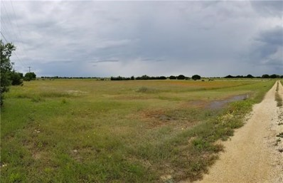 1450 County Road 221, Florence, TX 76527 - #: 1344003