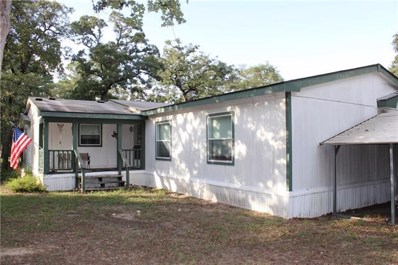 268 Mustang Drive, Paige, TX 78659 - #: 1371163