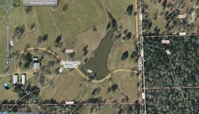 000 BECK RD, Smithville, TX 78957 - #: 1499483