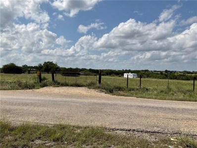 1360 County Road 217, Florence, TX 76527 - #: 1598145