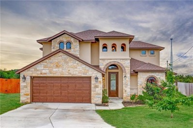 211 S Saw Grass Lane, Georgetown, TX 78633 - #: 2015248