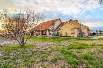 775 County Road 124, Georgetown, TX 78626 - #: 2201008