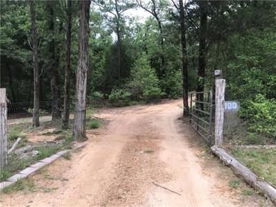 700 Wilhelm Way, Red Rock, TX 78662 - #: 2251839