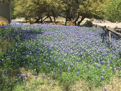 21103 Bluebonnet Cir, Lago Vista, TX 78645 - #: 2742627