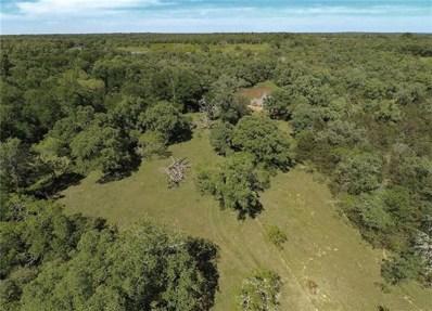 000 Mt. Pleasant Rd., Cedar Creek, TX 78612 - #: 2950418