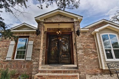 20808 Liveoak Lane, Manor, TX 78653 - #: 3336932
