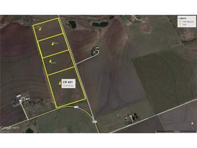 County Road 431, Thrall, TX 76578 - #: 3460569