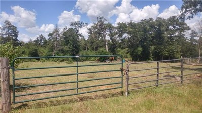 22XX State Hwy 21, Paige, TX 78659 - #: 4213958