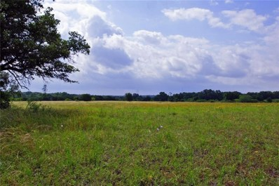 Tract 3 County Road 236, Liberty Hill, TX 78642 - #: 4851570