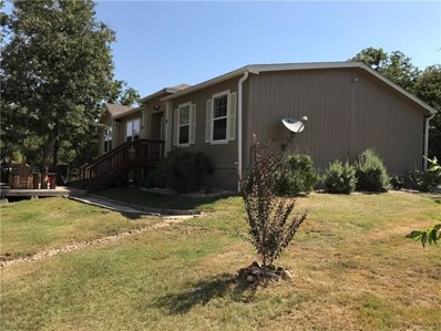 519 Pine Canyon Drive, Smithville, TX 78957 - #: 4885077