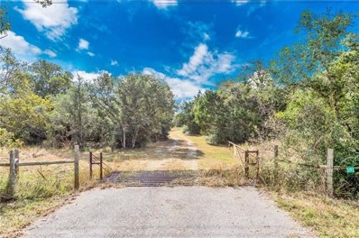 +\/- 17 ACRES Highway 290, Giddings, TX 78942 - #: 5045101
