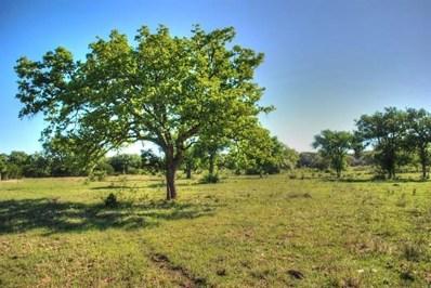 13746 Crows Ranch Road Rnch, Salado, TX 76571 - #: 5842478