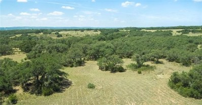 3143 N US Hwy 281 UNIT Lot 3B, Blanco, TX 78606 - #: 6292058