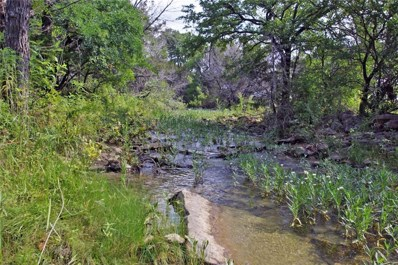 Tract 1 County Road 236, Liberty Hill, TX 78642 - #: 7100850