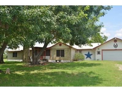 206 Bluebonnet Street, Burnet, TX 78611 - #: 8301522