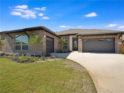 4142 Haight St, Round Rock, TX 78681 - #: 8494215