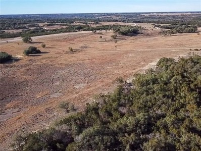 Tract 25A County Road 200A, Burnet, TX 78611 - #: 9118708