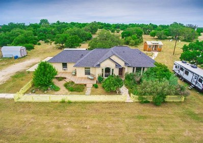 1500 County Road 233, Florence, TX 76527 - #: 9499424