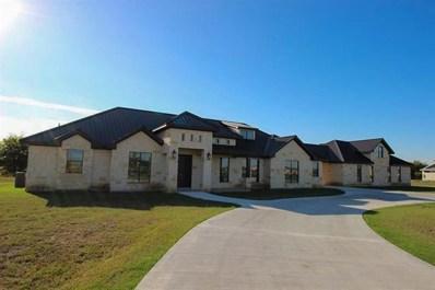 514 River Ranch Cir, Martindale, TX 78655 - #: 9518808