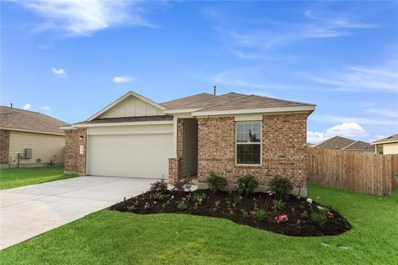 248 Mineral Springs Dr, Kyle, TX 78640 - #: 9526068