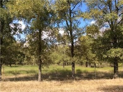475 Paffen Rd, Paige, TX 78948 - #: 9527441