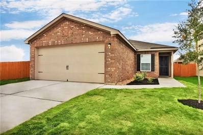 117 Independence Avenue, Liberty Hill, TX 78642 - #: 9873997