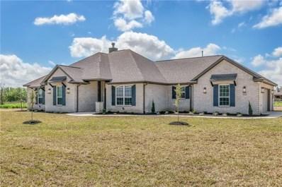 4232 Foxtail Court, Bryan, TX 77808 - #: 18014108