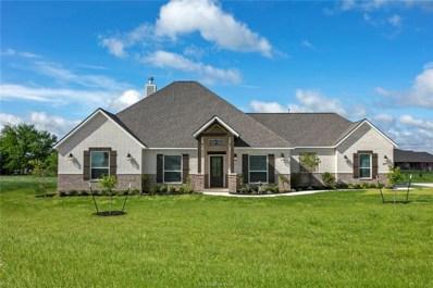 4248 Foxtail Court, Bryan, TX 77808 - #: 19018964