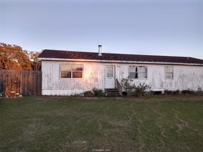 3422 Pebble Lane, Bedias, TX 77831 - #: 20002966