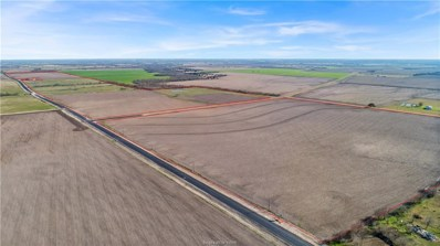 Fm 485 Farm To Market Road, Cameron, TX 76518 - #: 21001911