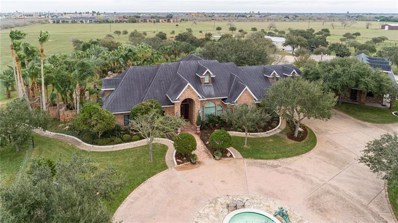 520 Cecil Ave, Kingsville, TX 78363 - #: 333679