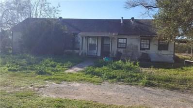233 Fm 772, Kingsville, TX 78363 - #: 339278