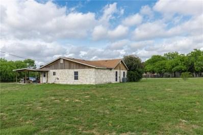 230 County Road 1035, Kingsville, TX 78363 - #: 343310