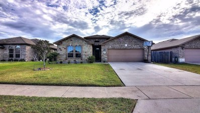 1814 Barlow Trail, Corpus Christi, TX 78410 - #: 352473