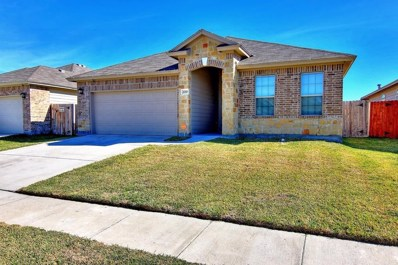2010 Rhumba, Corpus Christi, TX 78410 - #: 353624