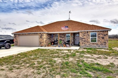 244 County Road 2101, Alice, TX 78332 - #: 354653